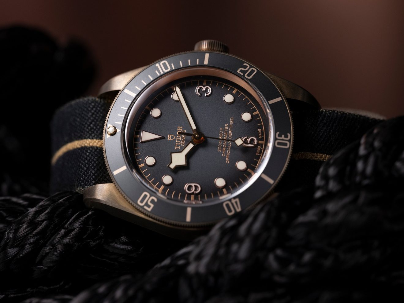 Tudor Black Bay Bronze Mood